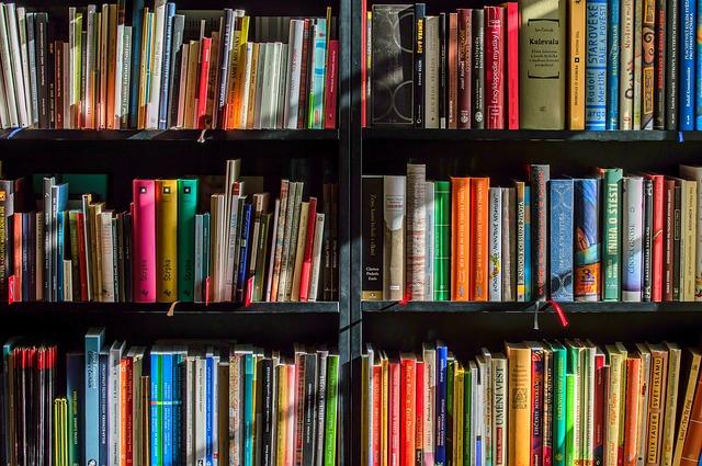 Boeken-kinderen-reizen-kast
